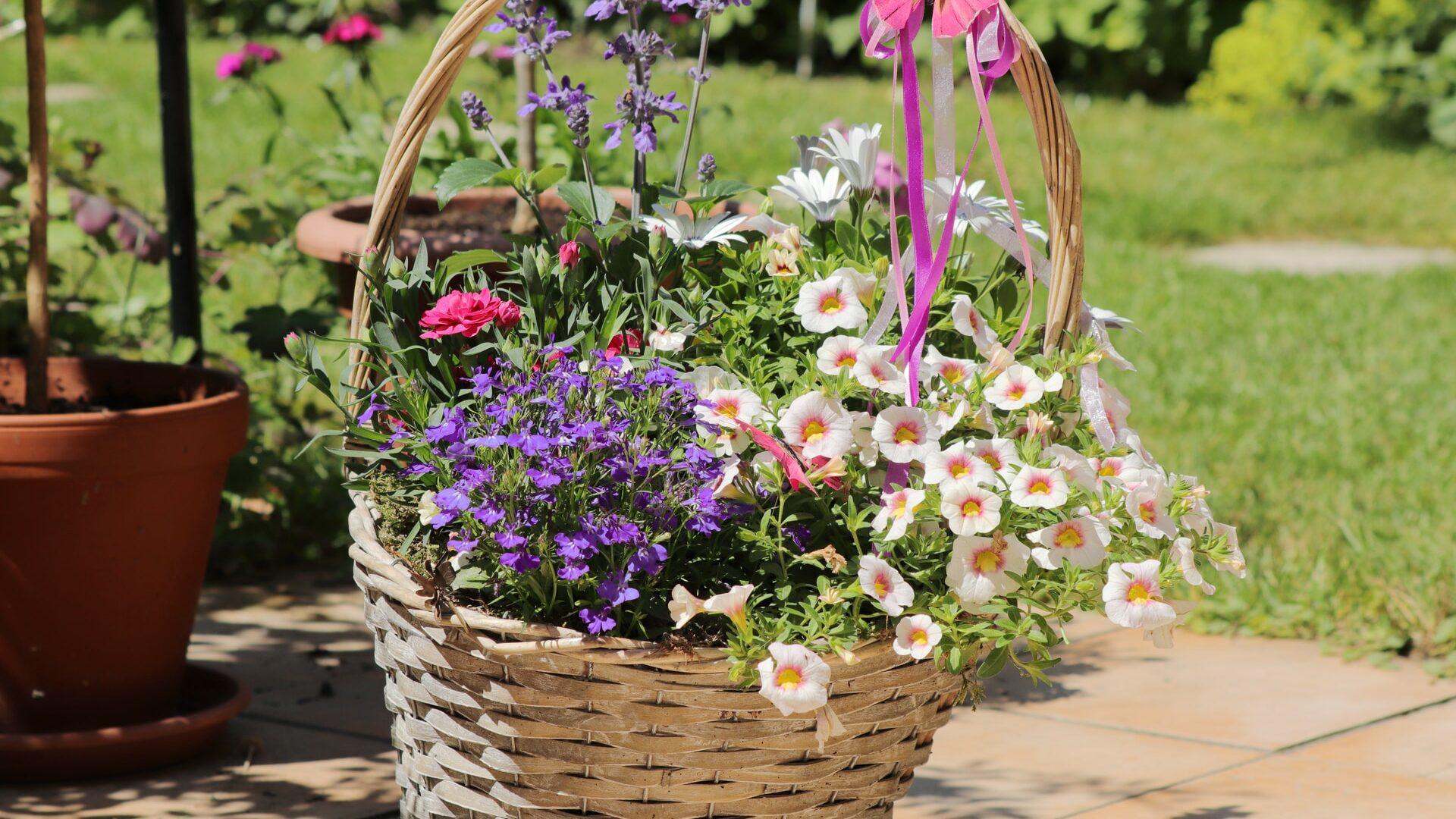 basket full of assorted flowers